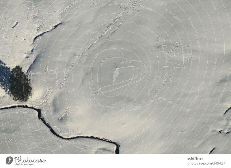 Wahre Liebe... Natur Landschaft Schönes Wetter Eis Frost Schnee kalt weiß Schneelandschaft Schneedecke Herz Liebesbekundung Liebeserklärung