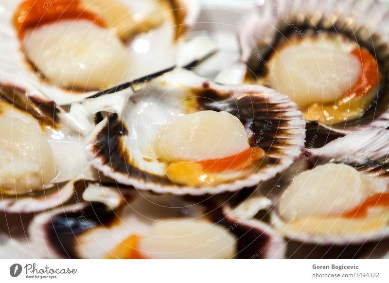 Jakobsmuscheln Nahaufnahme gekocht Essen zubereiten Küche lecker Diät Speise essen Lebensmittel frisch Feinschmecker Gesundheit Mahlzeit mediterran Ernährung