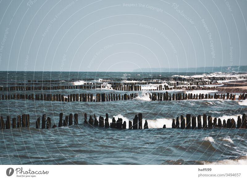 Wellengang mit Buhnen an der Ostsee Ostseeküste Dünung Gischt bewegte see Strand Küste Meer Wasser Sturm Mecklenburg-Vorpommern Holz Tourismus Erholung Idylle