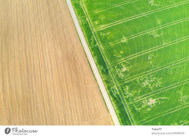 eine Agrarlandschaft von oben landwirtschaftlich Landwirtschaftlicher Weg Traktor Traktorpfad Feldhintergrund Wiesen-Hintergrund Air Luftaufnahme Textur Gras