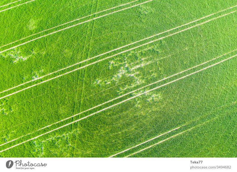 ein landwirtschaftliches Feld von oben Landwirtschaftlicher Weg Traktor Traktorpfad Feldhintergrund Wiesen-Hintergrund Air Luftaufnahme Textur Gras Bauernhof