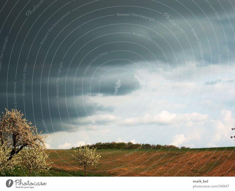 Gewitter zieht auf Natur Himmel Wolken grau Unwetter