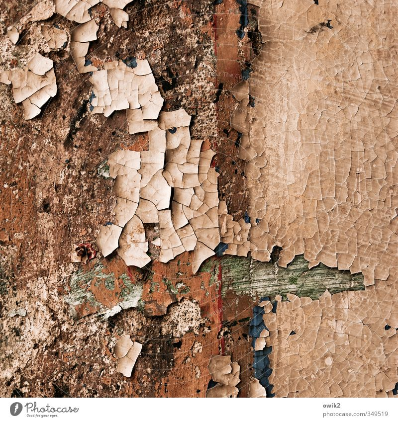 Deko 7 | Wandschmuck Kunst Farbstoff Mauer Fassade alt historisch trocken bizarr Ordnung Verfall Vergangenheit Vergänglichkeit verlieren Wandel & Veränderung