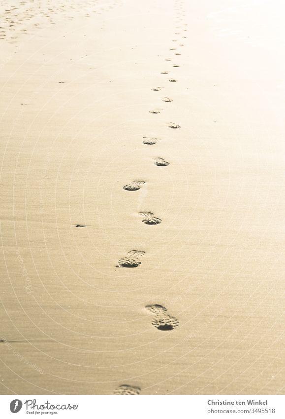 Einsame Fußspuren im Sand kommen aus der Ferne Sandstrand Einsamkeit einsam alleine Schuhabdrücke Gegenlicht Natur Menschenleer Ferien & Urlaub & Reisen Tag