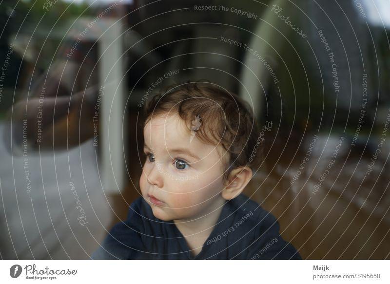 Junge hinter der Scheibe Kind Kindheit Kleinkind augen Innerhalb (Position) Mensch Farbfoto Tag Schwache Tiefenschärfe niedlich 1-3 Jahre Glück maskulin