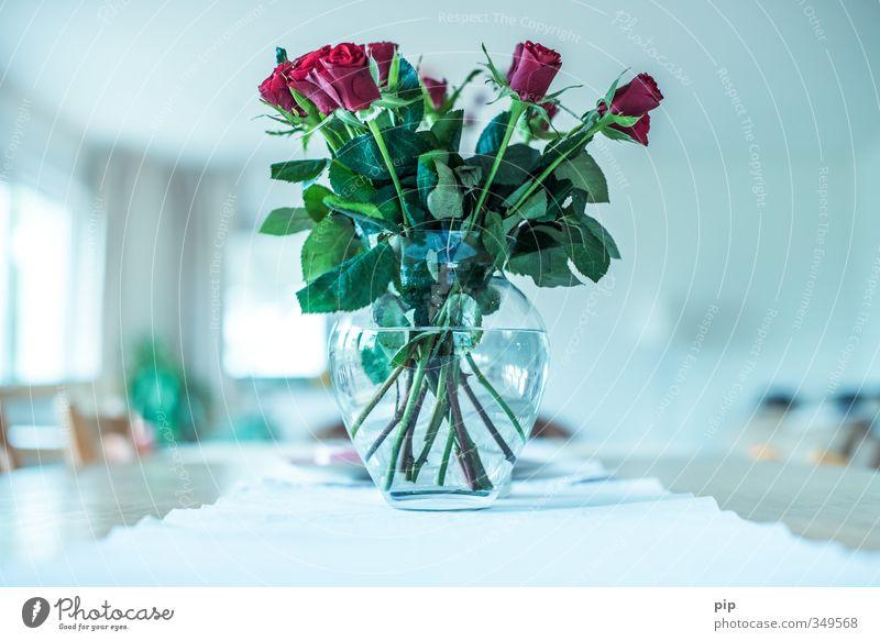 bukett Pflanze Baum Rose Blatt Blüte Blumenvase Glas hell grün rosa Muttertag Blumenstrauß Vase Tischwäsche Wohnzimmer Geburtstag Duft schön Stengel Bündel