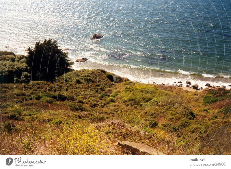 North Beach, San Francisco Strand Meer Wellen Brandung Natur Landschaft Wasser