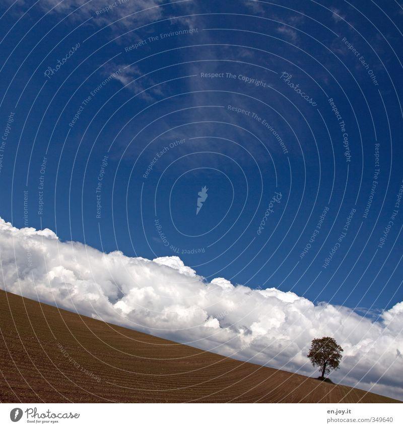 Lawine? Himmel Natur blau weiß Pflanze Baum Landschaft Wolken Umwelt Ferne Horizont träumen braun Wetter Feld Erde