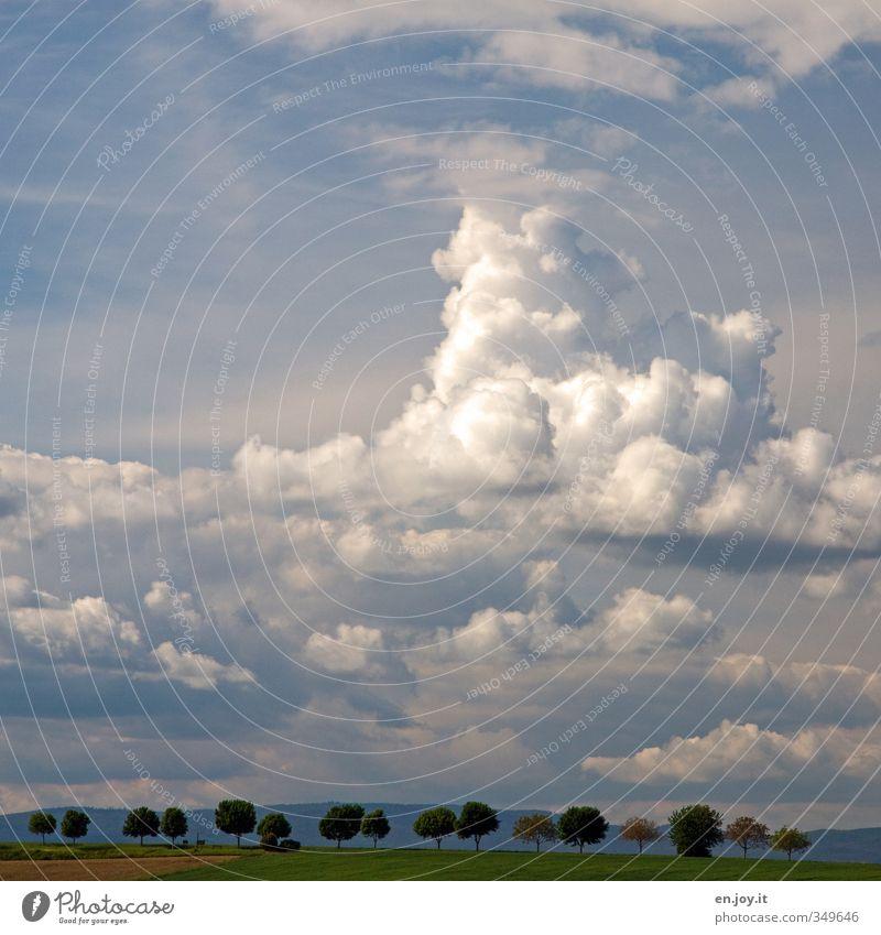 heiter bis wolkig Landwirtschaft Forstwirtschaft Umwelt Natur Landschaft Pflanze Erde Himmel Wolken Gewitterwolken Horizont Sommer Klima Klimawandel Wetter