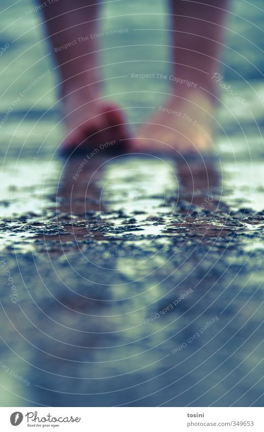 barfuß Fuß laufen Barfuß Wasser Steinboden Zehen nass Strand Meer Erholung Sommerurlaub Beine Farbfoto Außenaufnahme Textfreiraum unten Textfreiraum Mitte Tag