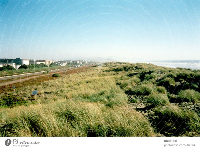 San Francisco Beach Meer grün Gras Landschaft Wind