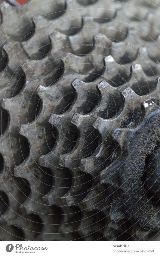 Detail der Fahrradschaltung | Symmetrie Ritzel Kettenschaltung Zahnkranz Zahnrad Schaltung Zähne nah gebraucht genutzt ölig Schmierfett Rad Sport Detailaufnahme