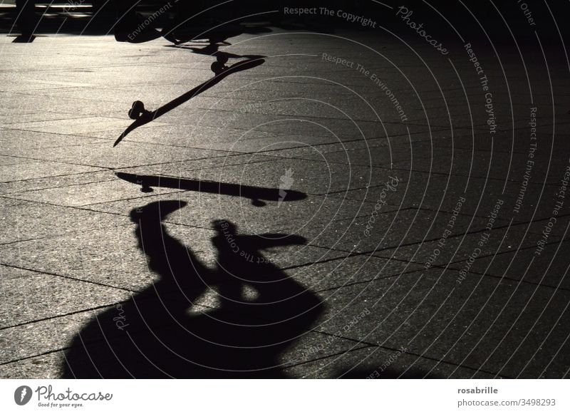 Skater beim Skateboardsprung mit seinem Schatten in abendlichem Rückenlicht | dynamisch springen in der Luft Akrobatik aktive Sport Abend Gegenlicht Sportler