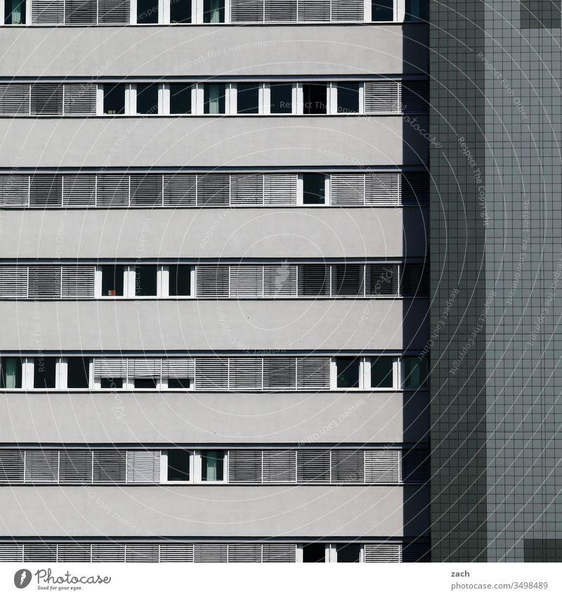 Fassade eines Hochhauses in grau Stadt Mauer Wand Tür Architektur Gebäude Linie Haus Hochhausfassade Plattenbau DDR-Architektur blau Fenster Fensterfront Berlin