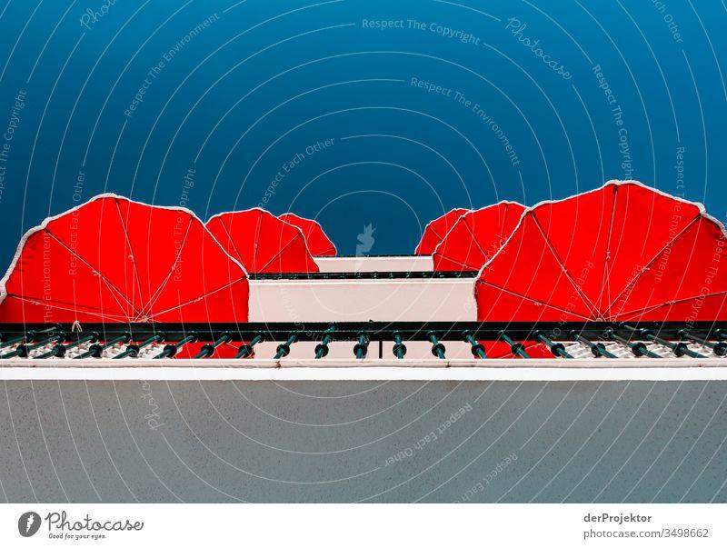Rot-weiß-blau: Sonnenschirme in Nazaré Freude Erholung Nazare Portugal Schwimmen & Baden Freizeit & Hobby Europa Küste Ferien & Urlaub & Reisen Schönes Wetter