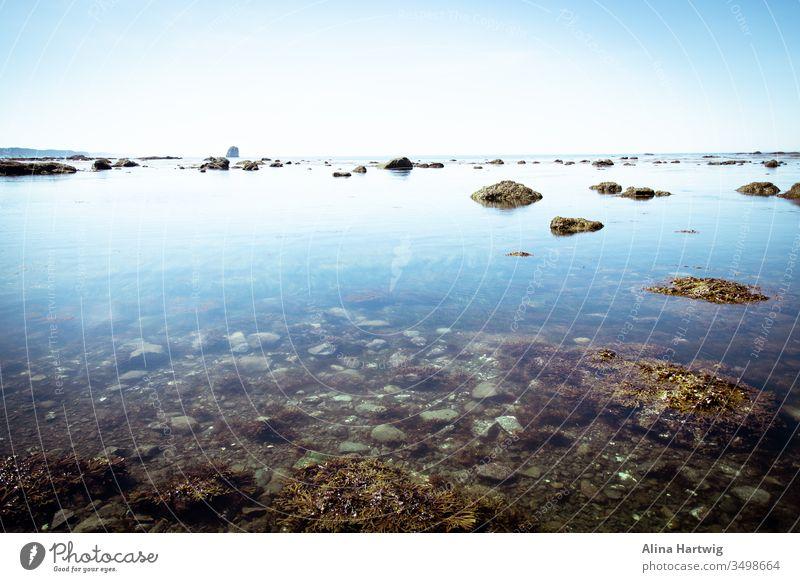 Wunderschöne blaue Pazifikküste Küste Meer pazifik Strand Küstenlinie Horizont Himmel Sonne Sonnenlicht sonnig Sommer reisen Landschaft Natur Wasser Steine