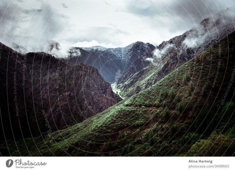 Dunkelschwarze Schlucht im Morgennebel Nebel Schwarze Schlucht Berge Fluss Hügel Wolken Himmel reisen Landschaft Natur erkunden wandern Colorado grün blau