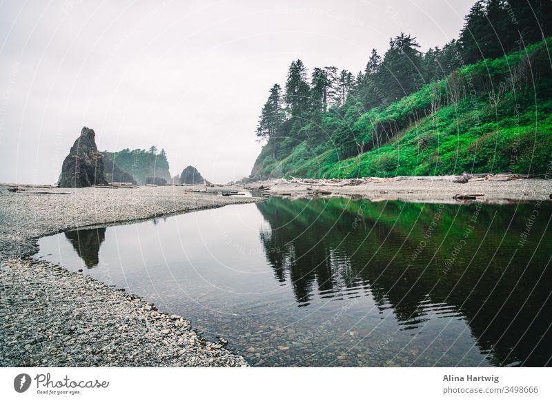Die Küstenlinie des Pazifischen Ozeans in Amerika verzaubert Strand Pazifik Meer MEER Verlassen ruhig friedlich Frieden Nebel Morgen Licht im Freien Wunder