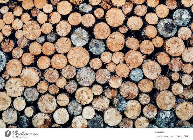 Gestapelte Baumstämme Holz Baumstamm baumstämme hölzern Bauernhaus Jäger Brennholz Lagerfeuer Außenaufnahme Menschenleer Holzstapel Stapel braun