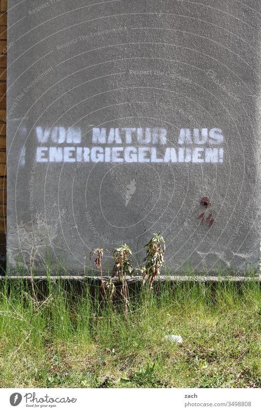 Fassade mit einem Grafitti erneuerbare Energien Buchstaben Wand Zeichen Mauer Textfreiraum unten Schriftzug Graffiti Schriftzeichen Textfreiraum oben Gebäude