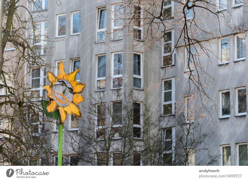 Der Farbfleck vor der grauen Fassade Appartement Architektur Hintergrund Nackter Baum Berlin Klotz Ast Gebäude Gebäudeaußenseite gebaute Struktur Großstadt
