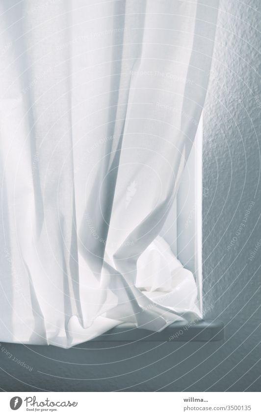 vorübergehende Schließung mit erster Lockerung Vorhang Fenster Gardine Häusliches Leben Wohnung Lichtschutz geschlossen zugezogen Fensterbrett Stille