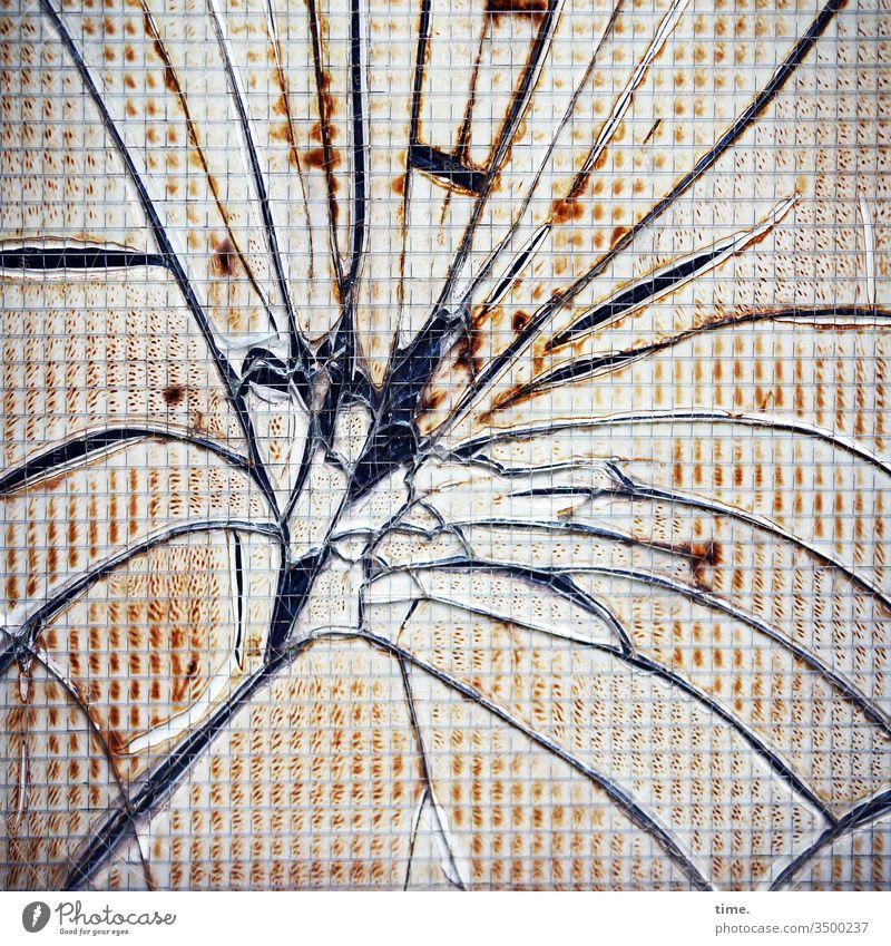 Sprung in der Schüssel verbundglas glasbruch scherbe scheibe riss sprung gegenlicht dreckig trashig folienreste muster struktur inspiation detail kaputt