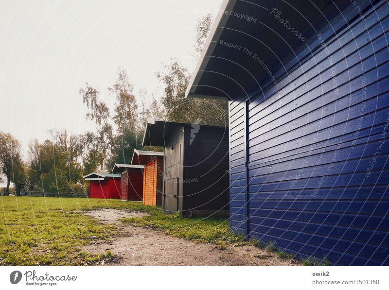 Häuserzeile Hütten Reihe Holz Holzhaus mehrfarbig bunt blau rot orange Bäume Himmel Wiese geschlossen menschenleer Außenaufnahme Natur glänzend einfach rustikal