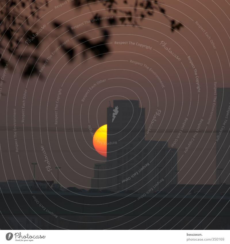 sonnenuntergänge gehen immer. Himmel schön Stadt Baum Sonne rot Erholung gelb Straße Gebäude PKW außergewöhnlich Verkehr leuchten Hochhaus beobachten