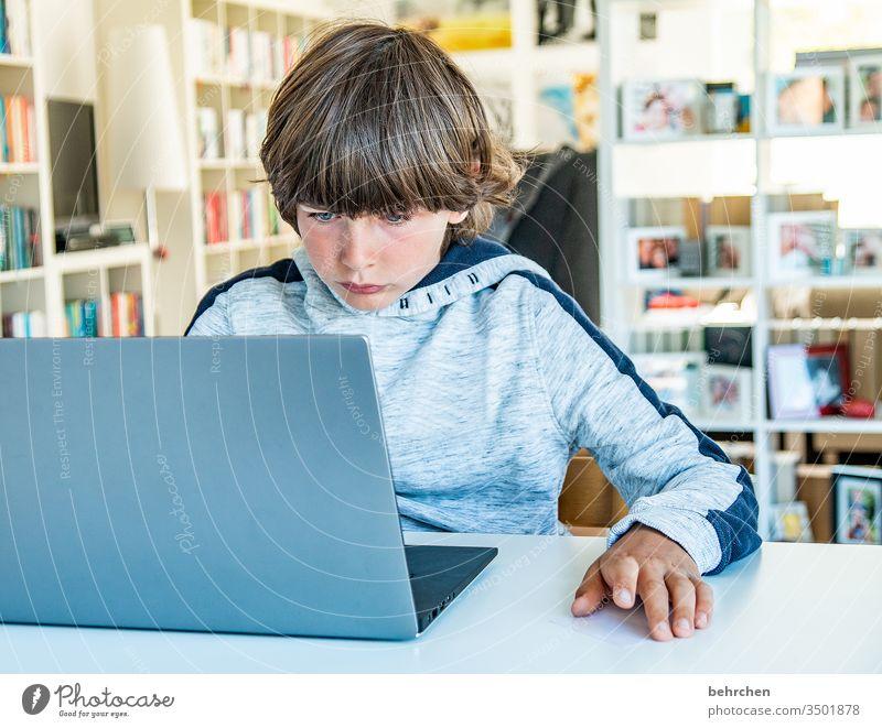 homeschooling | auf modern angestrengt anstrengen konzentriert Konzentration Homeschooling Homeoffice Bildung rechnen schreiben lesen zu Hause arbeiten