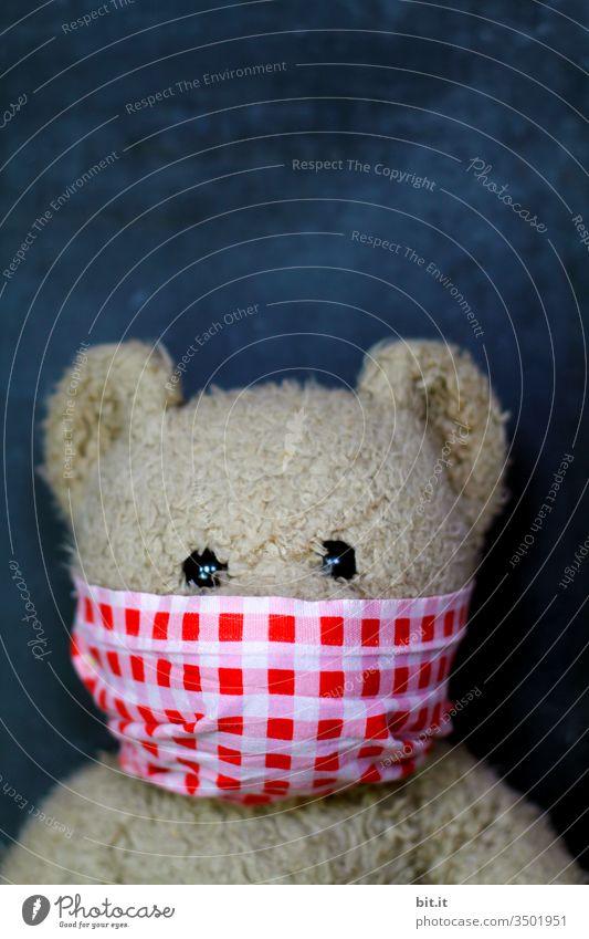 Hände hoch und Geld her... Teddybär Bär Plüsch Kindheit niedlich Spielzeug braun Maske Gesicht Gesichtsmaske Atemmaske Schutz Schutzmaske Virus Pandemie