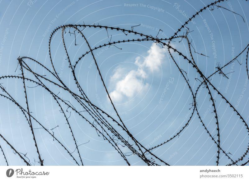 Stacheldrahtzaun in der Mitte einer weißen Wolke Gefängnis Sicherheit Zaun Draht stechend Metall mit Stacheln versehen Borte bügeln Schutz Stahl vereinzelt