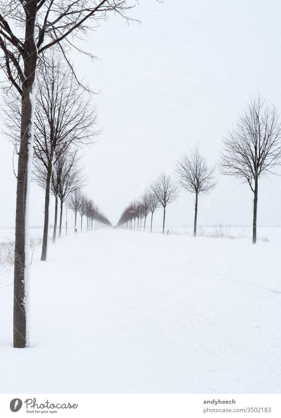 Schneeverwehungen auf der Landstraße nach Wintereinbruch Asphalt Atmosphäre Hintergrund schön blau Niederlassungen PKW Zentrum chaotisch kalt Textfreiraum Tag