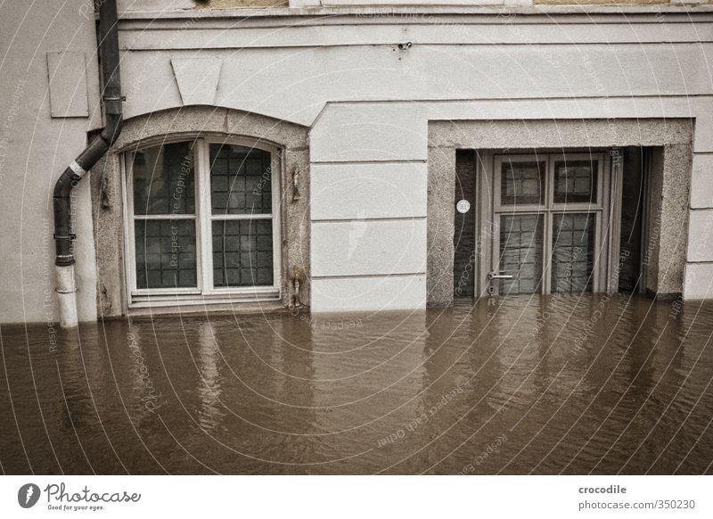 passau hochwasser 2013 Umwelt Natur Urelemente Wasser schlechtes Wetter Unwetter Regen Fluss Donau Passau Haus Einfamilienhaus Entsetzen Verzweiflung Respekt