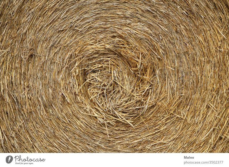 Die Textur der gepressten Strohwalze in Nahaufnahme Ackerbau Hintergrund trocknen Landwirtschaft Gras Heu natürlich Natur organisch Saison Ernten Weizen
