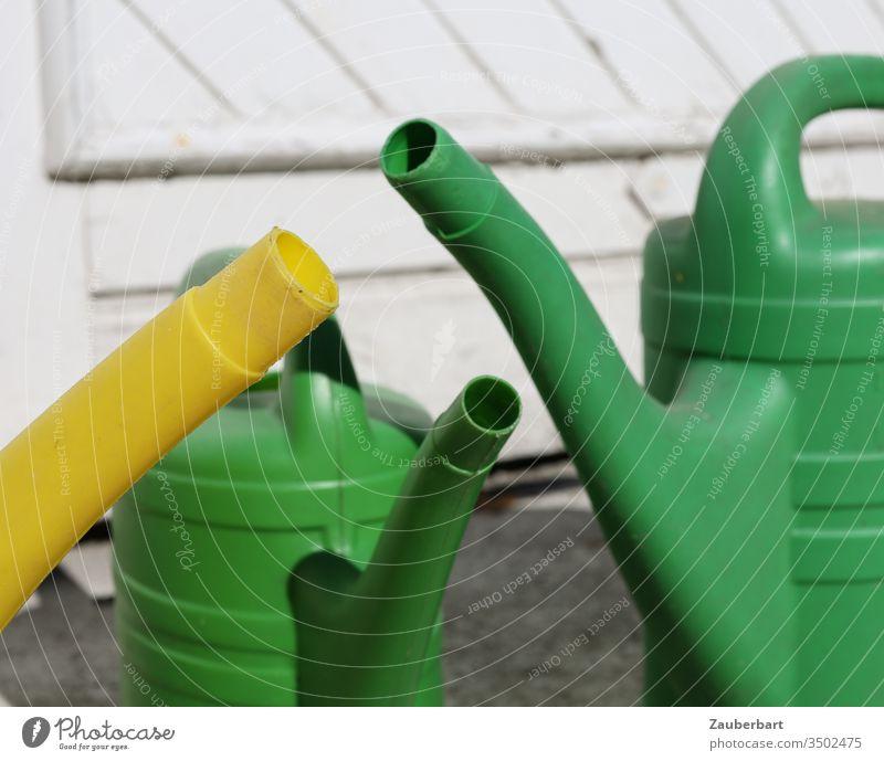 Drei Gießkannen im Gespräch Tülle Garten Wasser gießen grün gelb Gruppe Treffen Gartenarbeit Tür Gärtner Frühling