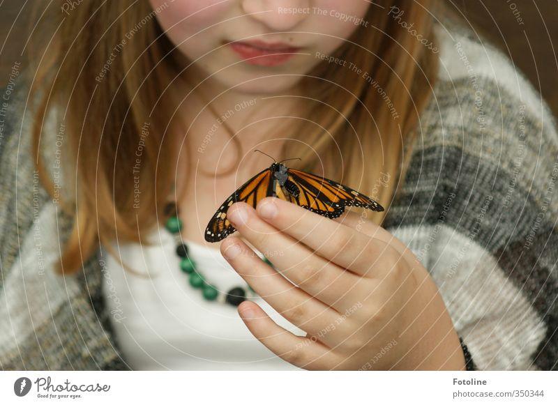 He du! Mensch feminin Kind Mädchen Haut Kopf Haare & Frisuren Gesicht Nase Mund Lippen Hand Finger Umwelt Natur Tier Schmetterling 1 nah natürlich Farbfoto