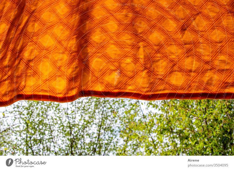 frisch gewaschen Decke Wäsche feucht trocknen Tuch Bettdecke aufgehängt Frühling Bäume frisches Grün Sträucher schönes Wetter orange neonfarben sauber