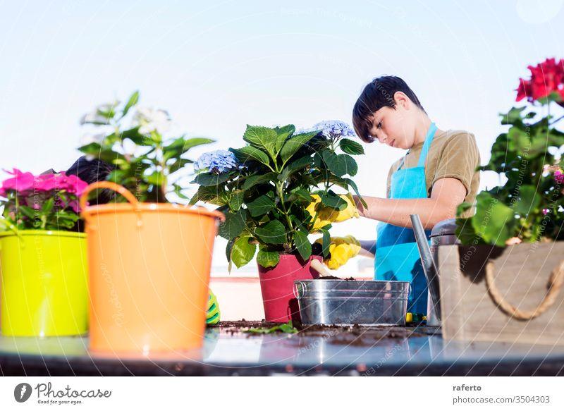 Junger Teenager trägt eine Gärtner-Schürze, während er an einem sonnigen Tag auf der Terrasse gärtnert Gartenarbeit 1 zwei schaufeln Pflege grün Blumentopf
