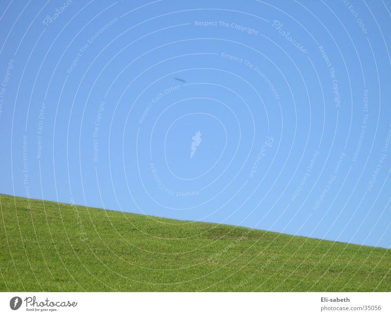 wiese und himmel Wiese Gras grün Alm Berge u. Gebirge Himmel blau verrückt Neigung