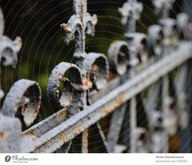 Baumaterial / Schmiedeeisen / AST 5 Brandenburg Garten Dekoration & Verzierung Metall alt stehen dunkel rund Spitze grau Schutz Symmetrie Trauer Trennung