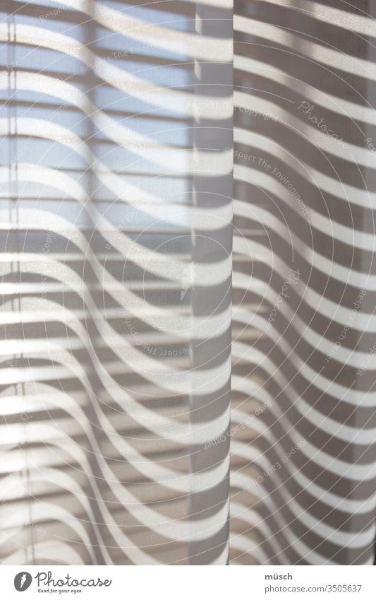 Schattenwurf Licht Sonne Sommer Durchsicht Wärme Streifen weiß blau Himmel Jalousie Fenster leicht Linien
