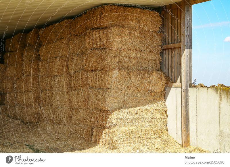 Stroh in Ballen unter einem Holzdach landwirtschaftlich Ackerbau Landschaft Bauernhof Ernte Heugarben Natur Saison Sommer Landwirtschaft Feld Lebensmittel gold