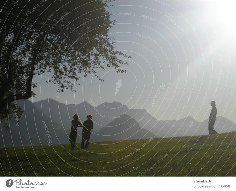 lichtspiel Baum Licht Alm Wiese Menschengruppe Sonne Berge u. Gebirge Silhouette Schatten