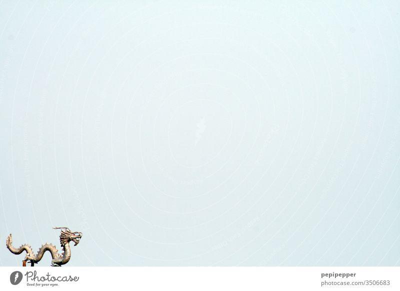 Goldener Drache vor blauem Himmel Wolken Sommer Schlange Außenaufnahme gold Mythos fantasie Fabelwesen Tiergesicht Zähne zeigen Maul Tierporträt