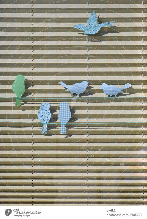 Parallelgesellschaft Deko Tür Sichtschutz Papier Bastelarbeit Vögel sitzen fliegen schwatzen gemeinsam Sonnenlicht Schatten bunt blau grün beige Gedeckte Farben