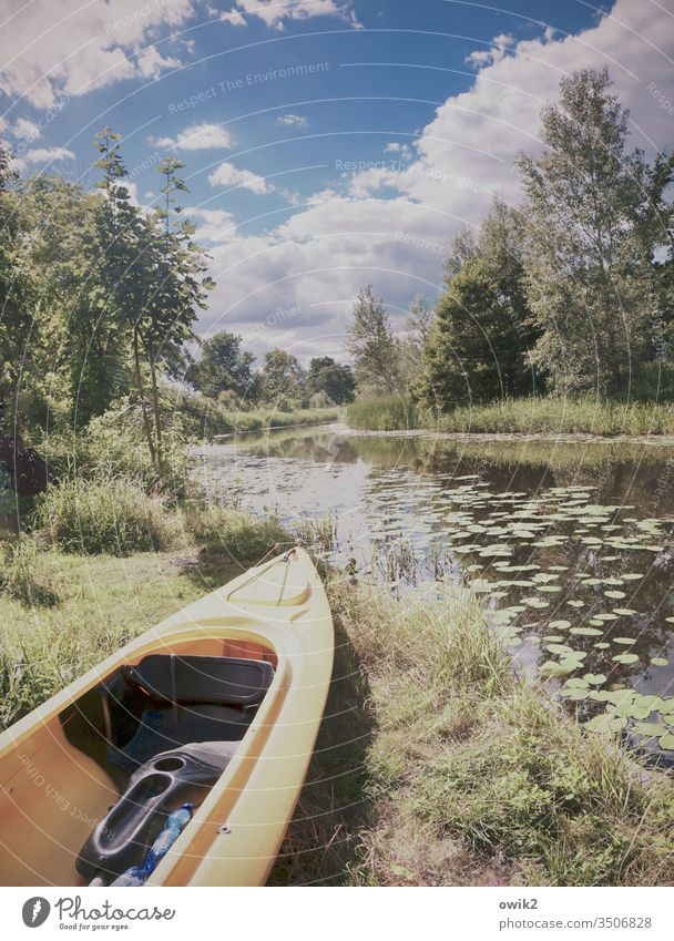 Nasse Landschaft Kanal Natur Fluss Farbfoto Menschenleer Wasser Außenaufnahme Reflexion & Spiegelung grün Sonnenlicht Sommer Himmel Tag Licht Baum Pflanze
