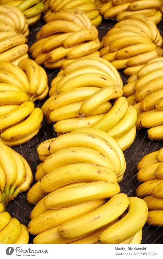 Natürliche reife Bananenbüschel auf einem lokalen Markt. Haufen Frucht exotisch Lebensmittel Diät tropisch organisch Vitamin frisch gelb Gesundheit viele Sale