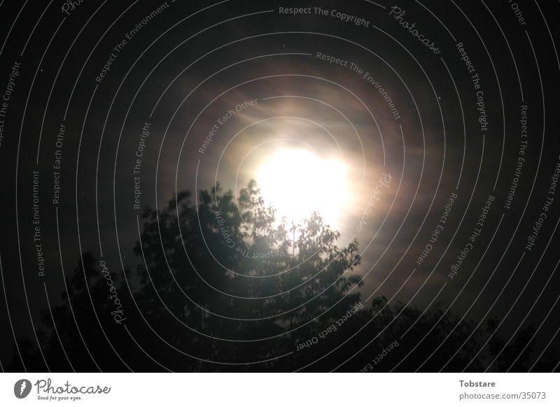 mondschein Nacht Wolken Nebel Mondschein Fototechnik Lichterscheinung gespänstig dunstig