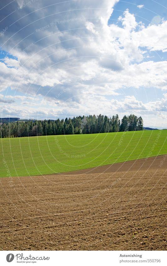 4 - Schichten - Landschaft Himmel Natur blau grün Pflanze Baum Wolken Wald Umwelt Wiese Wärme Gras Frühling Horizont braun